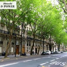 DP Paris Green-lit rue